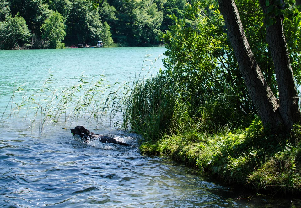 Baden im Liepnitzsee