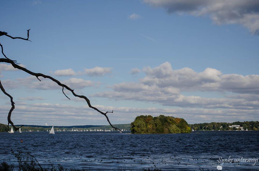 Blick über den Wannsee von der Berliner Pfaueninsel