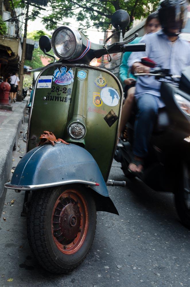 Thai Mofa - Frosch