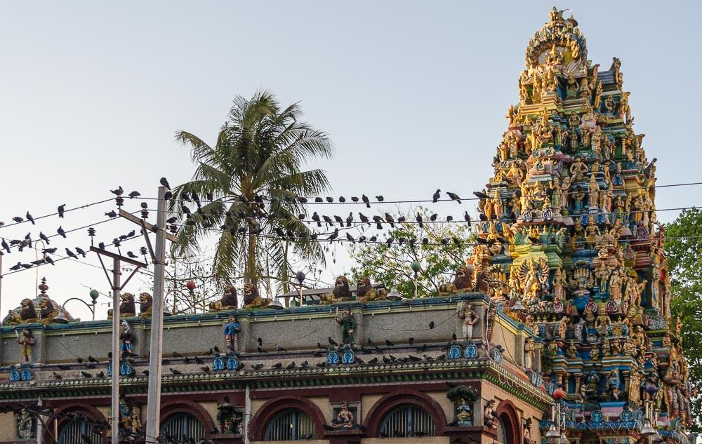 Hindu Tempel in yangon