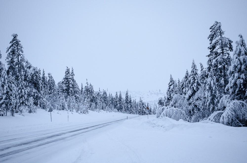 Schneelandschaft Lapland