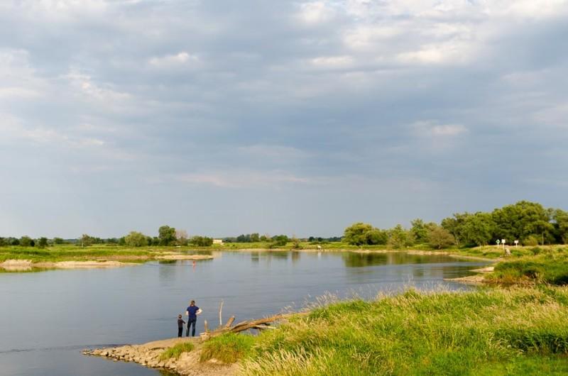 Radweg entlang der Oder in Brandenburg