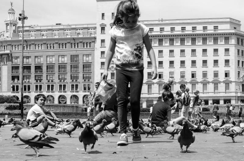 Barcelona: Tauben füttern am Plaça de Catalunya // synke-unterwegs.de