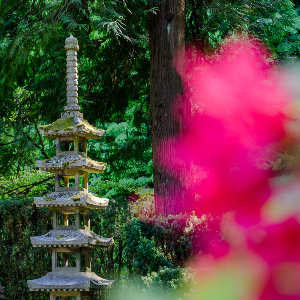 Oregon: Japanese Garden in Portland
