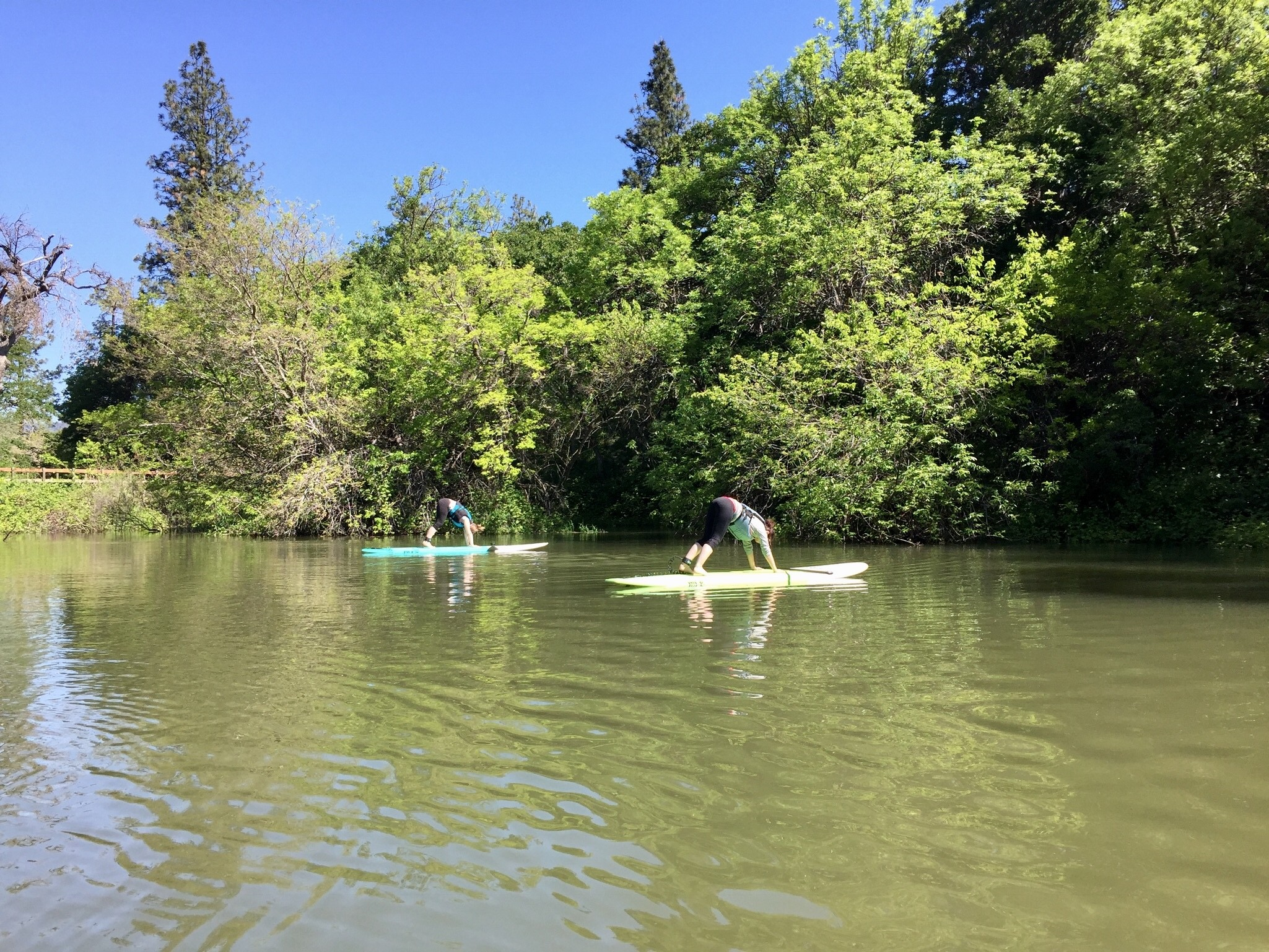 Oregon: SUP auf dem Columbia River